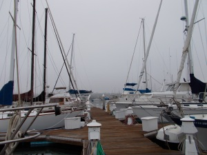 A foggy morning at the marina.
