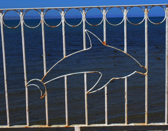 Dolphin fence