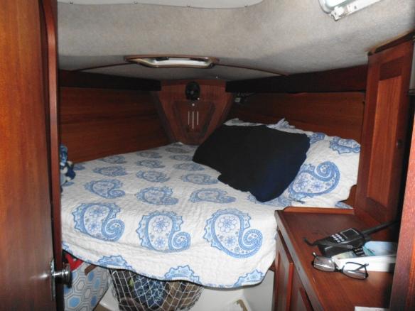 Cozy bed SNS